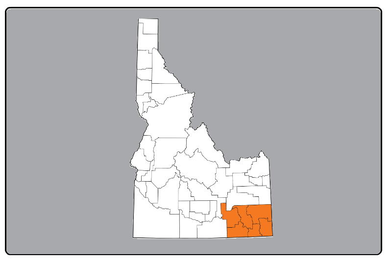 Idaho county map with Region 5 highlighted