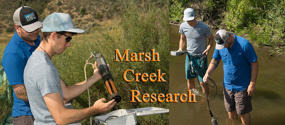 Research by students on Marsh Creek