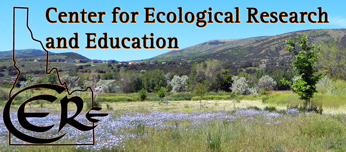 CERE title page center for ecological research and education