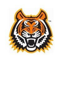 The ISU tiger mascot used in place of a staff picture