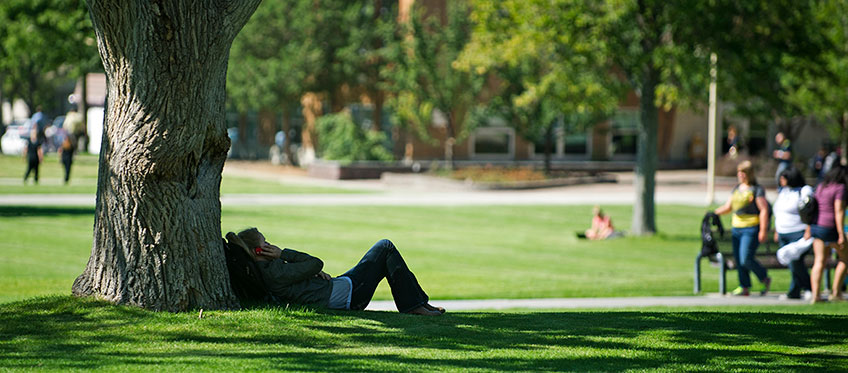 Student lying under a tree in the quad