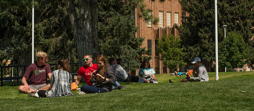 Students having a picnic on the quad