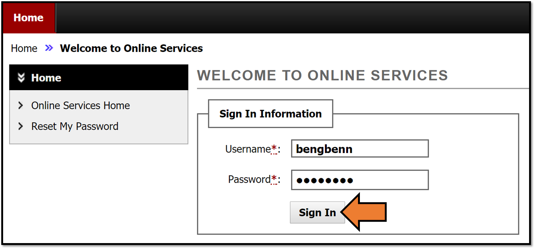 Signing in to the Services Portal using your new username and password