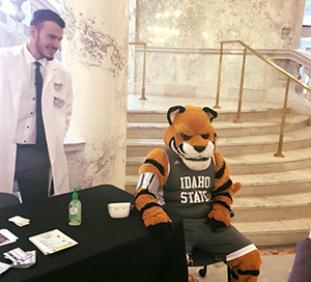 Benny the Bengal getting blood pressure checked by student pharmacist during ISU Day at the Capitol 2018