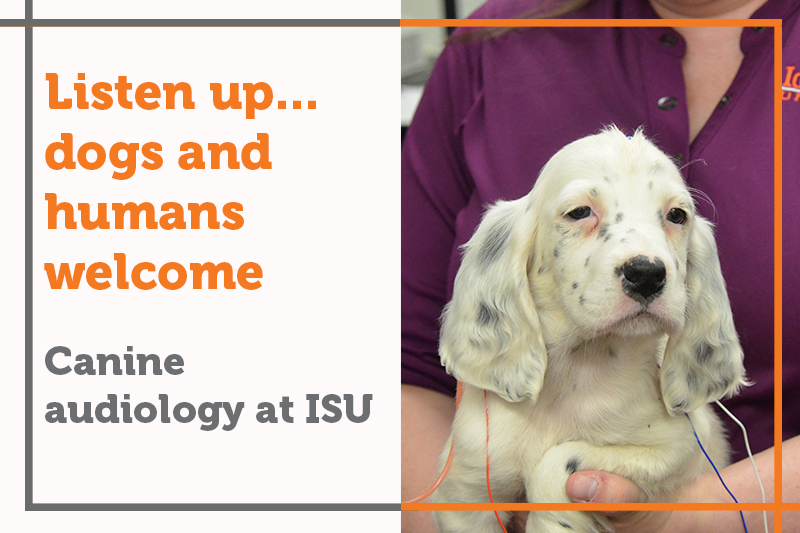Listen up... dogs and humans welcome at Idaho State Audiology Clinic