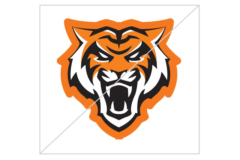 Do not add extra strokes or outlines to the logo, Bengal head