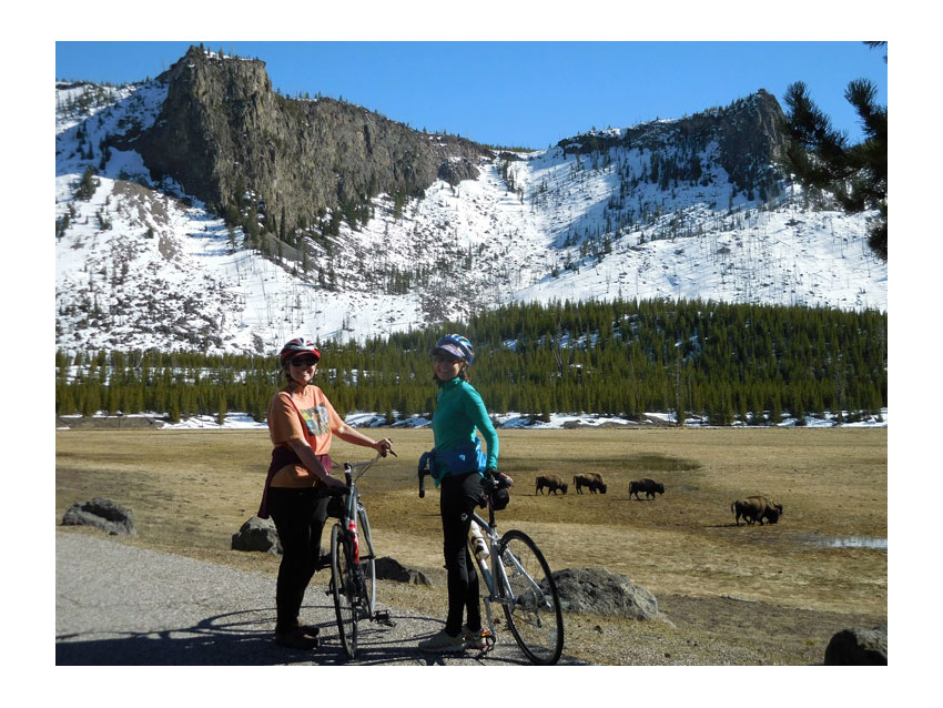 Students riding bikes in yellowstone