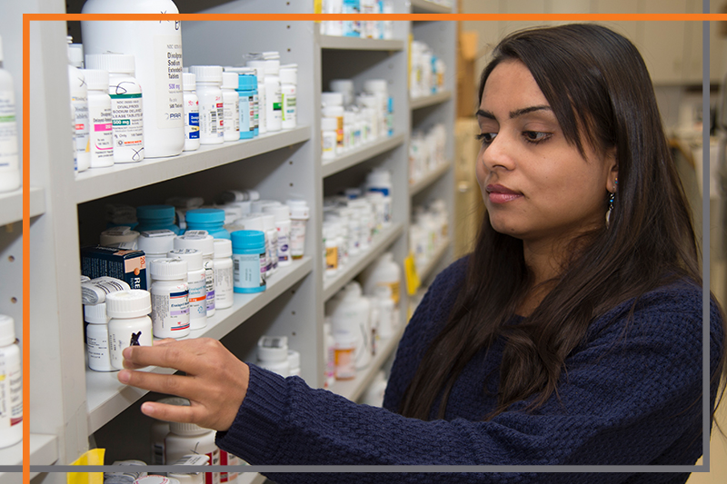 Pharmacy faculty member Anushka Burde fills a prescription at Bengal Pharmacy