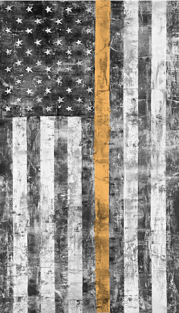 Black and white photo of hanging US flag with one orange stripe