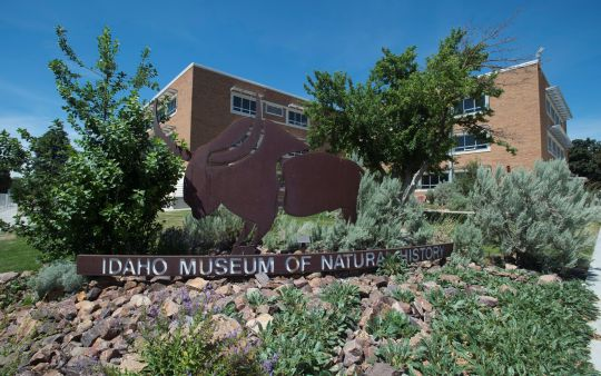 Idaho Museum of Natural History (IMNH)