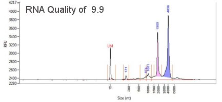 RNA quality from Fragment Analyzer Trace