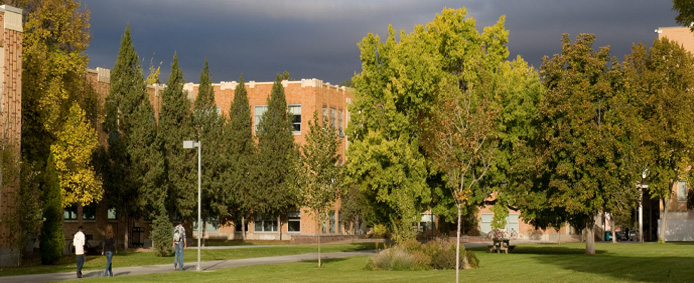 Idaho state university picture with trees in it
