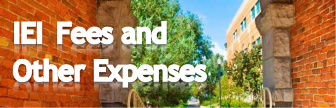 IEI Fees and Other Expenses