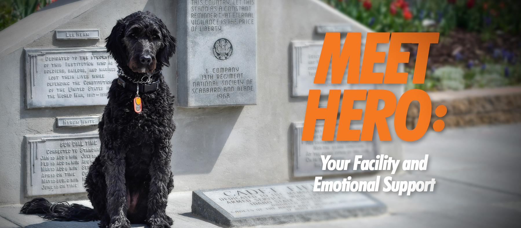 Meet Hero: your facility and emotional support