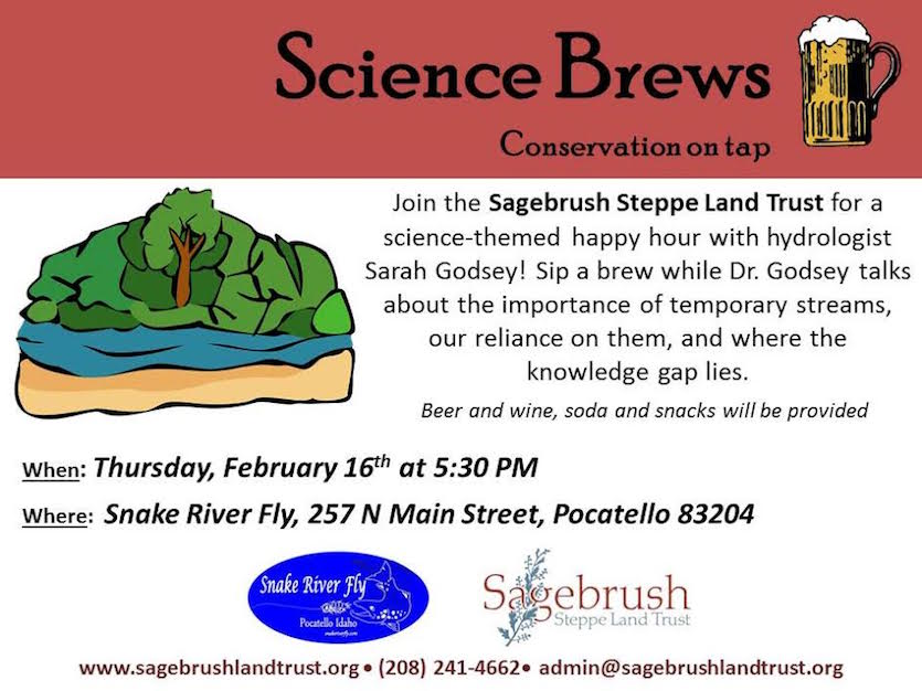 Importance of temporary streams topic of Science Brew presentation Feb. 16