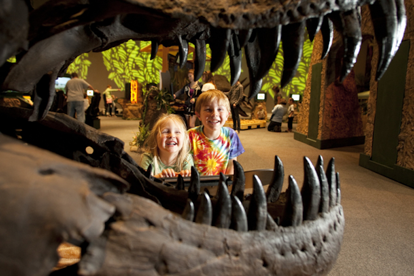 'Be the Dinosaur' exhibit opens May 13 at the Idaho Museum of Natural History