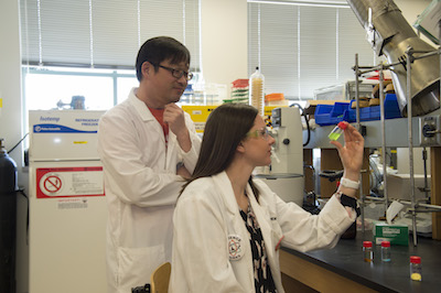 A photo of Professor Joshua Pak and student Emily Morley examining a chemical.