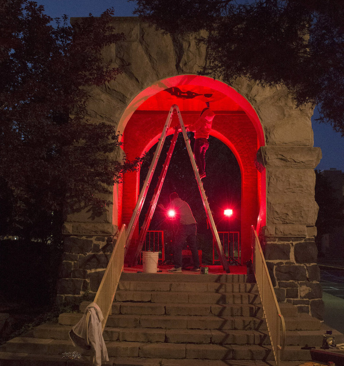 Swanson Arch lit up with red light in darkness as beekeeper work on it to retrieve bees.