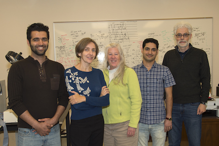 Photo of five researchers involved with the project.