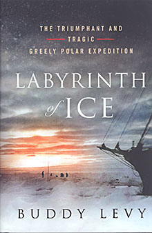 Labyrinth of Ice book cover
