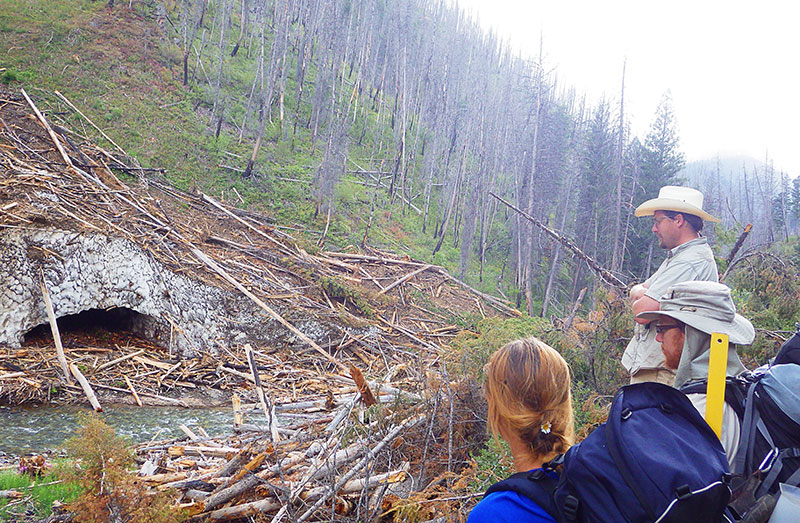 Colden Baxter explaining to students Mirijam Scharer and Adam Eckersell the connectivity of riparian ecosystems to alpine ecosystems as evidenced by a large influx of woody debris into Big Creek