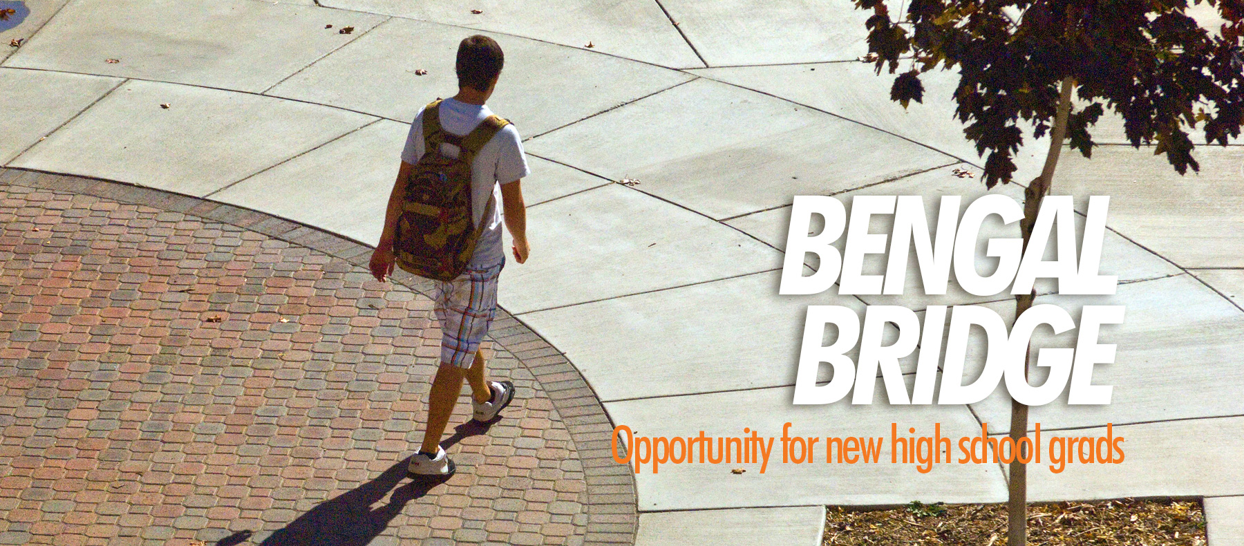 Bengal Bridge opportunity for new high school grads