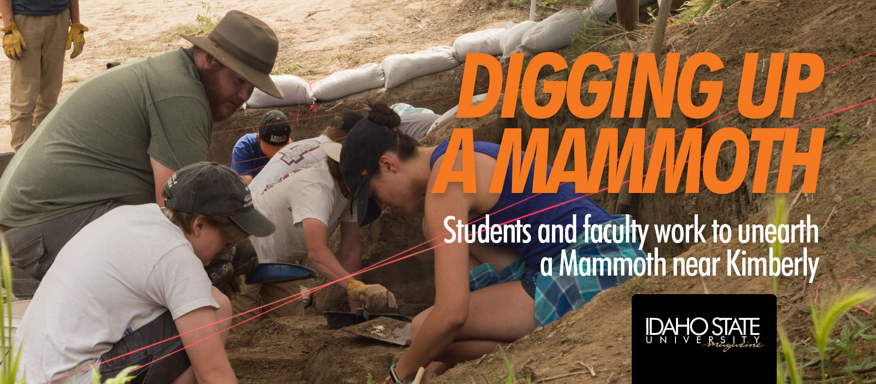 Digging up a mammoth. Students and faculty work to unearth a mammoth near Kimberly.